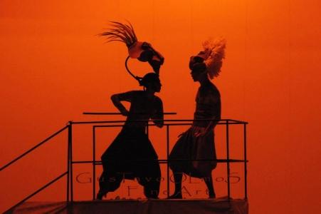ballet espetaculo rei leao 15