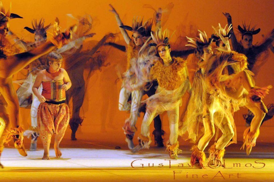 ballet espetaculo rei leao 04