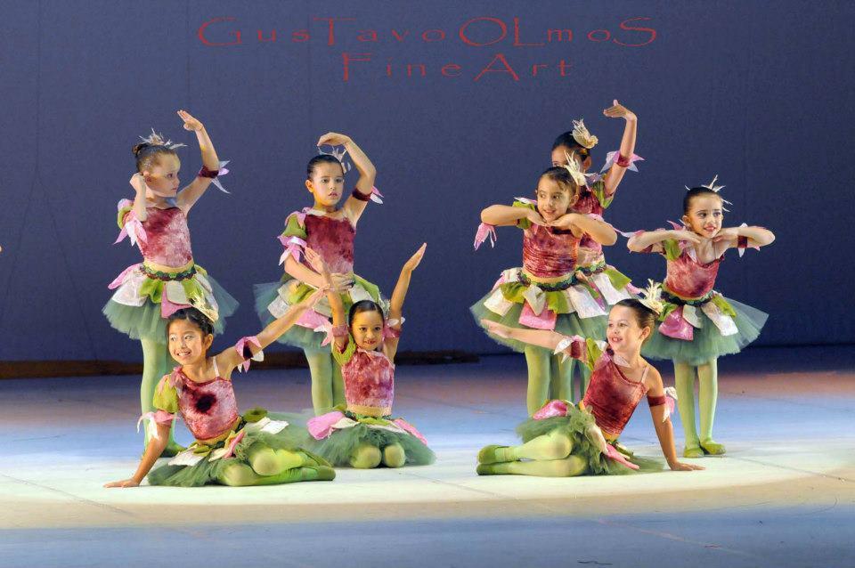 ballet espetaculo rei leao 08