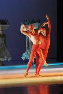 ballet espetaculo rei leao 14